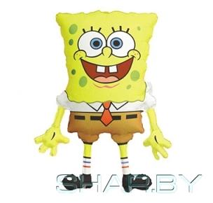 Боб квадратные штаны